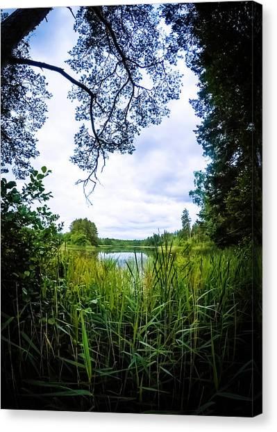 Swedish Canvas Print - Lake View by Nicklas Gustafsson