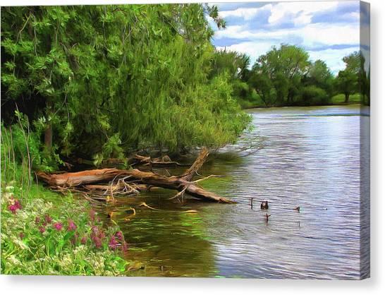 Lakeside Blossoms Canvas Print