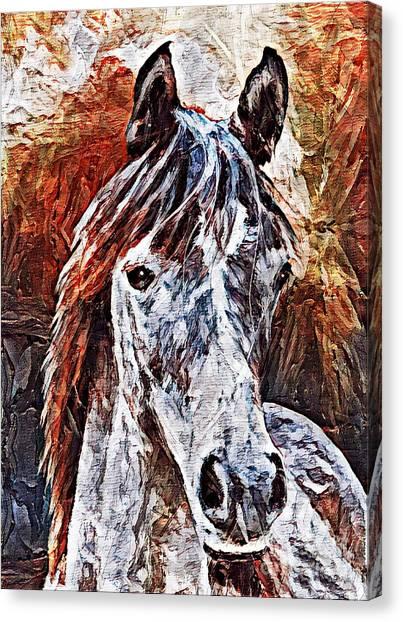 Lakota Canvas Print