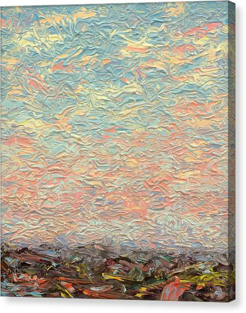 Prairie Sunrises Canvas Print - Land And Sky 3 by James W Johnson
