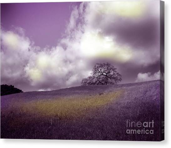 Landscape In Purple And Gold Canvas Print by Laura Iverson