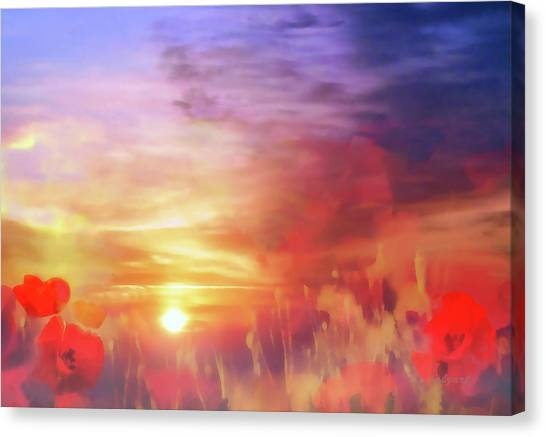 Landscape Of Dreaming Poppies Canvas Print