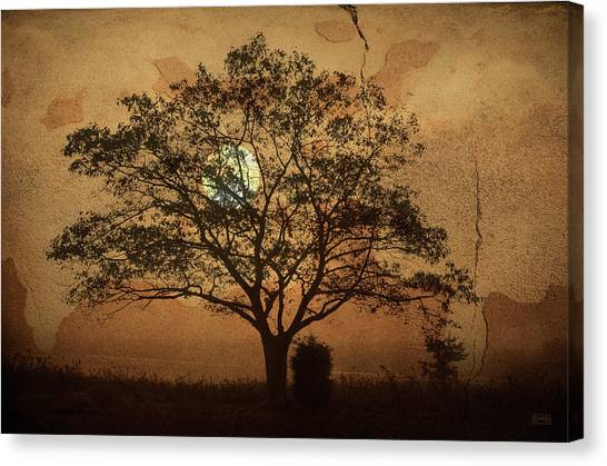Landscape On Adobe Wall Canvas Print