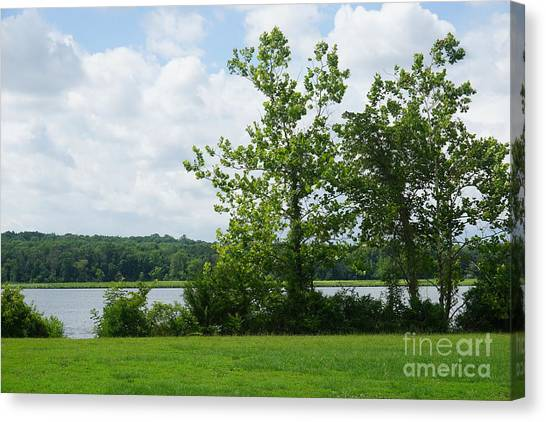 Landscape Photo II Canvas Print