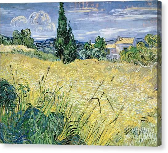 Vincent Van Gogh Canvas Print - Landscape With Green Corn by Vincent Van Gogh