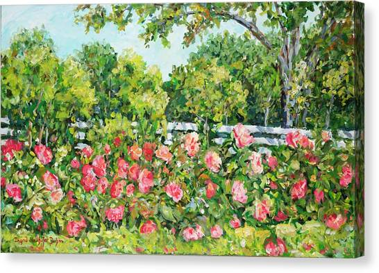 Landscape With Roses Fence Canvas Print