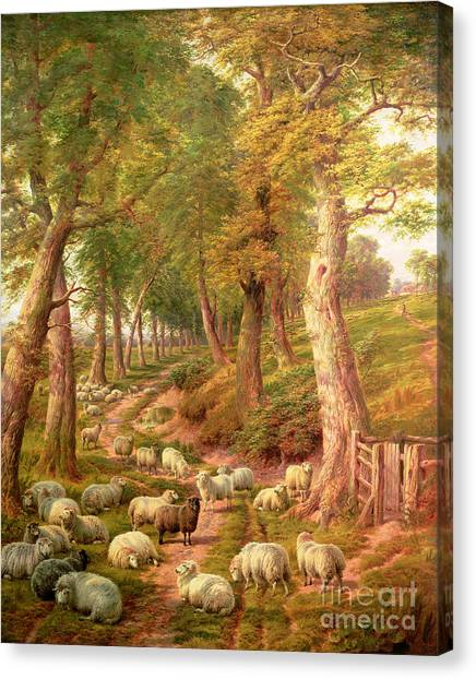 Farm Animal Canvas Print - Landscape With Sheep by Charles Joseph