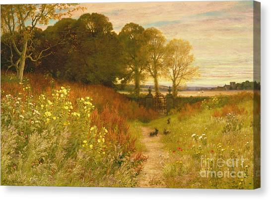 Easter Bunny Canvas Print - Landscape With Wild Flowers And Rabbits by Robert Collinson