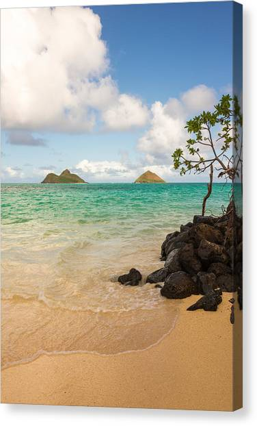 Park Scene Canvas Print - Lanikai Beach 1 - Oahu Hawaii by Brian Harig