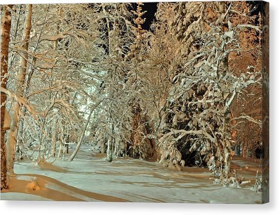 Laplandia Canvas Print by Boris Shekhirev