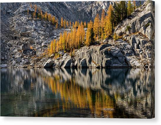 Larch Reflection In Enchantments Canvas Print