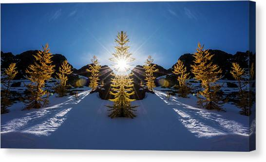 Larch Canvas Print - Larches In Snow Reflection by Pelo Blanco Photo