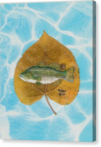 Large Mouth Bass #2 Canvas Print