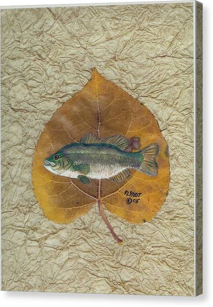 Large Mouth Bass #3 Canvas Print