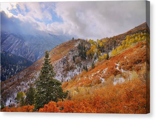 Utah Canvas Print - Last Fall by Chad Dutson