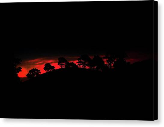 Bush Canvas Print - Last Light by Az Jackson