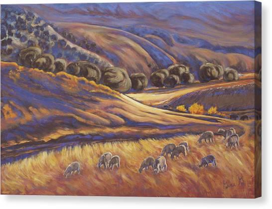 Last Light On Little Cimmaron Canvas Print