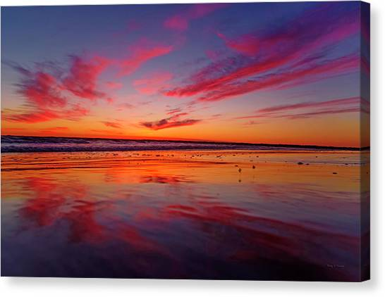 Sandpipers Canvas Print - Last Light Topsail Beach by Betsy Knapp