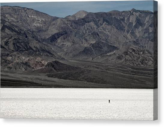 Nature Canvas Print - Last Man On Earth by Pierre Leclerc Photography