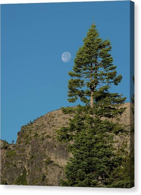 Last Moments Of A Full Moon Canvas Print