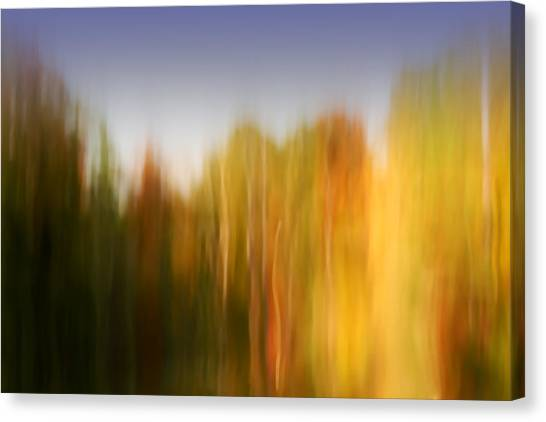 Last November At Duke Canvas Print by Margaret Denny