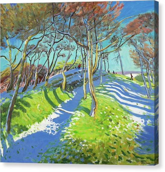 Snow Melt Canvas Print - Last Of The Snow, Ladmanlow by Andrew Macara