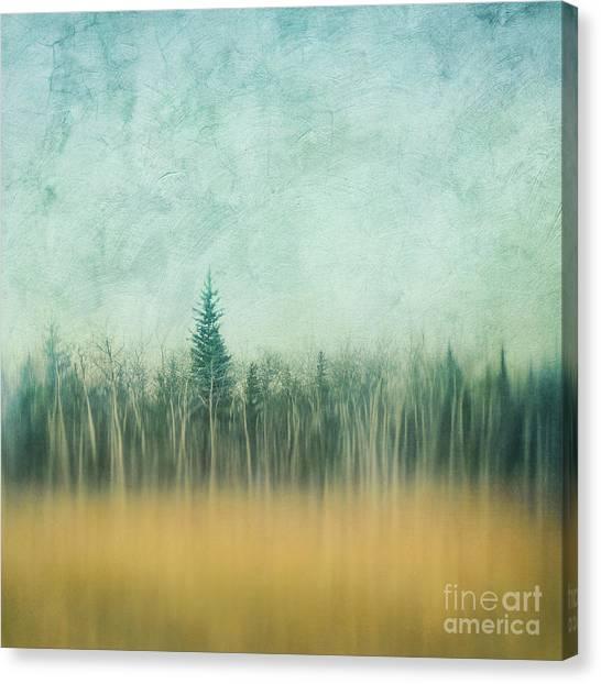 Treeline Canvas Print - Last Year's Grass by Priska Wettstein