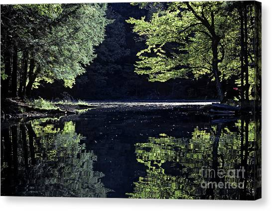 Late Afternoon Reflection Canvas Print