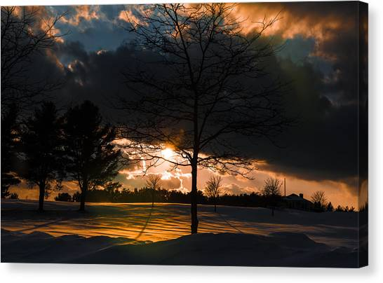 Late Afternoon Sun Canvas Print