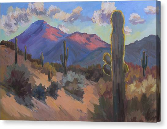 Sonoran Desert Canvas Print - Late Afternoon Tucson 2 by Diane McClary