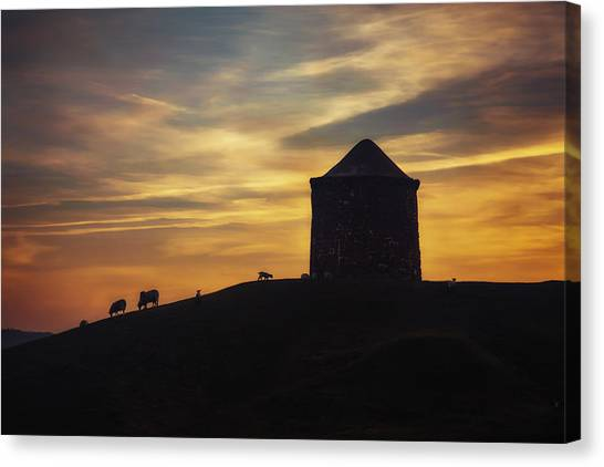 Burton Canvas Print - Late Evening Grazing by Chris Fletcher