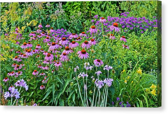 Late July Garden 2 Canvas Print
