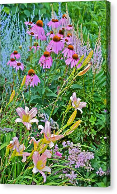 Late July Garden 3 Canvas Print