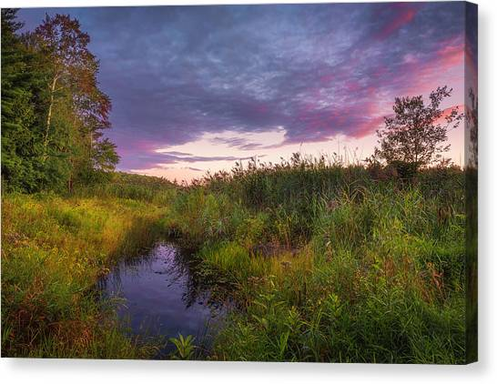 Late Summer Color At Blue Marsh Canvas Print