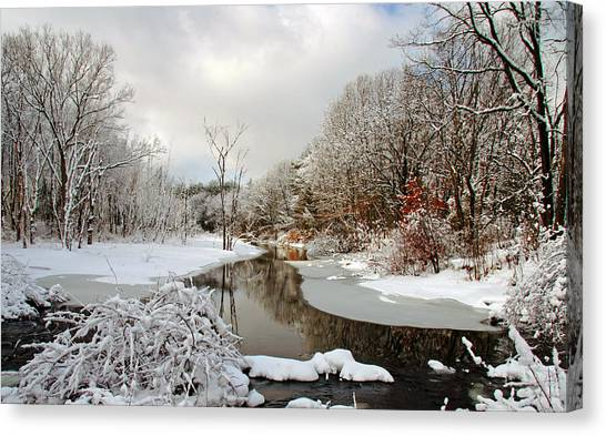 Late Winter Storm Canvas Print