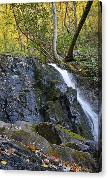 Laurel Falls Great Smoky Mountains National Park Canvas Print