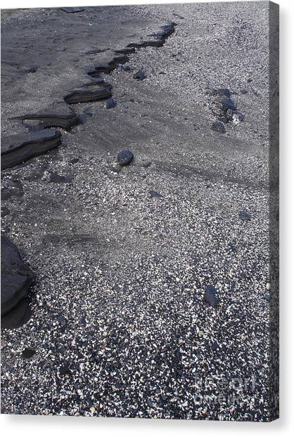 Lava And Shell Canvas Print by Chad Natti
