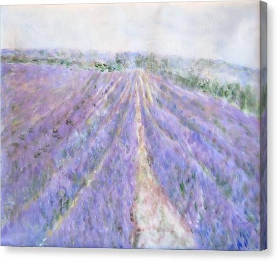 Lavender Fields Provence-france Canvas Print
