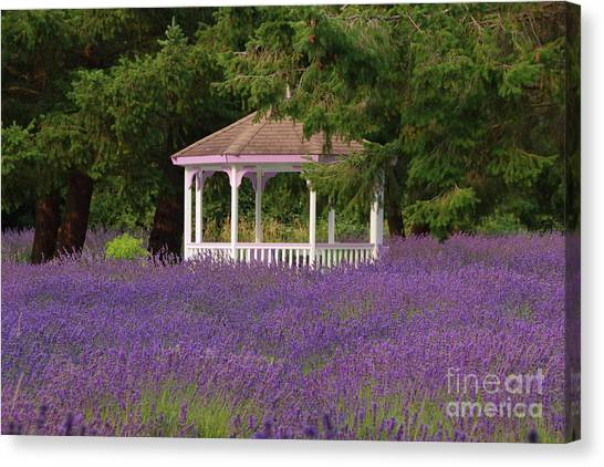 Lavender Gazebo Canvas Print