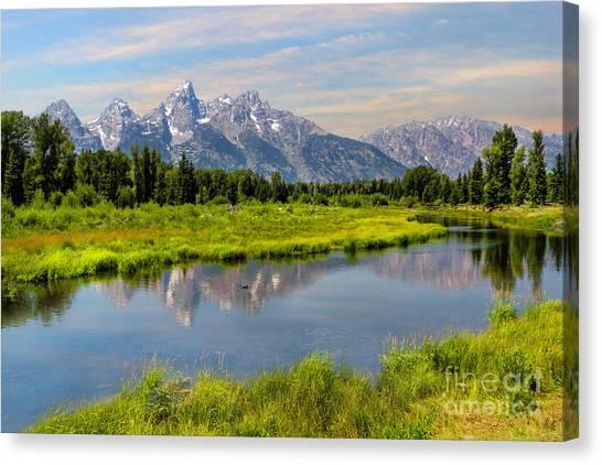 Lavender Teton Peaks  Canvas Print
