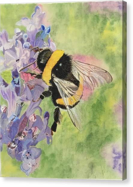 Lavender Visitor Canvas Print
