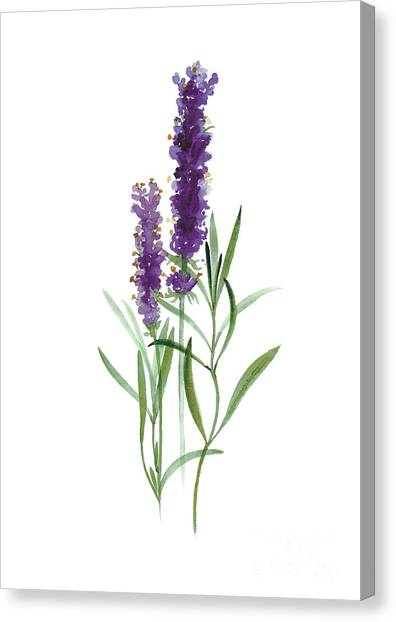 Purple Canvas Print - Lavender Watercolor Posters  by Joanna Szmerdt