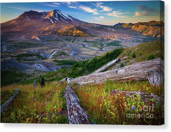 Mount St. Helens Canvas Print - Lawetlat La by Inge Johnsson