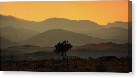 Layers Of Lucidity Canvas Print
