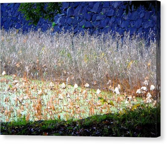 Layers Canvas Print by Roberto Alamino
