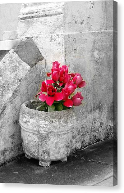 Layfayette No One Red Roses Canvas Print by Heather S Huston
