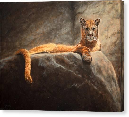 Laying Cougar Canvas Print
