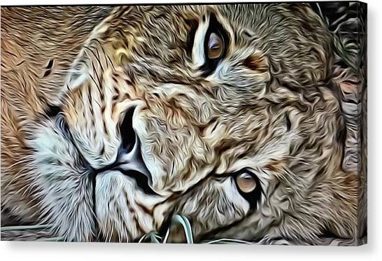 Lazy Lion Canvas Print