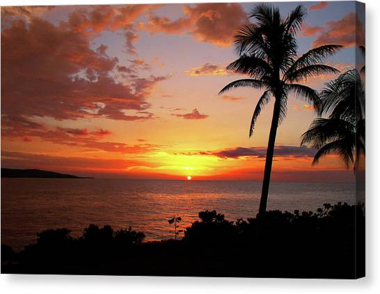 Palm Trees Sunsets Canvas Print - Lazy Sunset by Kamil Swiatek