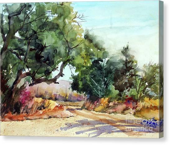 Lbj Grasslands Tx Canvas Print